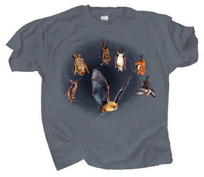 Bats Hanging Around Adult T-shirt