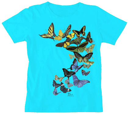 Butterfly Sunrise Ladies Scoop-Neck T