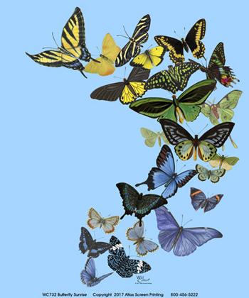 Butterfly Sunrise Ladies Scoop-Neck T