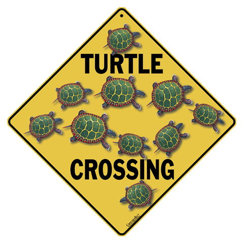 Turtle Crossing - Front