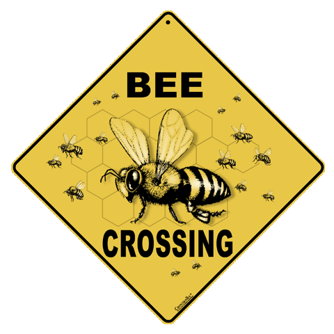 Bee Crossing - Front