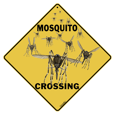 Mosquito Crossing - Front
