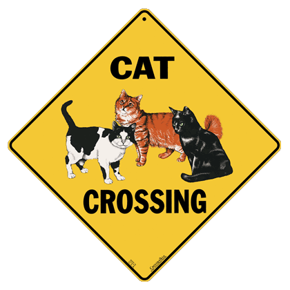 Cat Crossing - Front