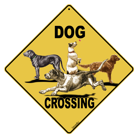 Dog Crossing - 2009 - Front