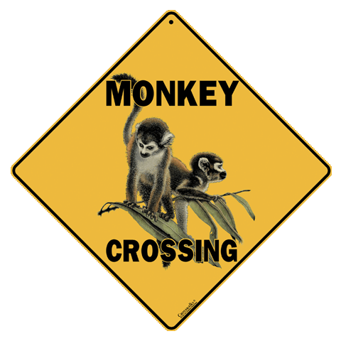 Monkey Crossing