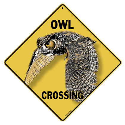Owl Crossing