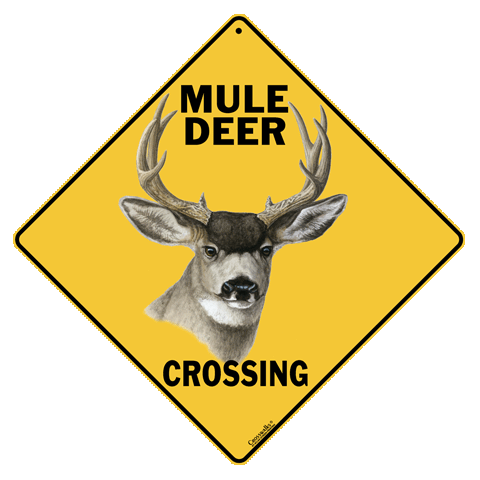 Mule Deer Crossing - Front