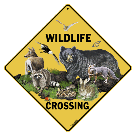 Wildlife Crossing - Front