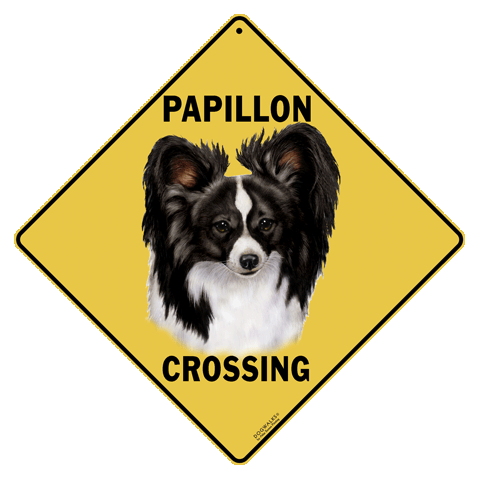 Papillon Crossing