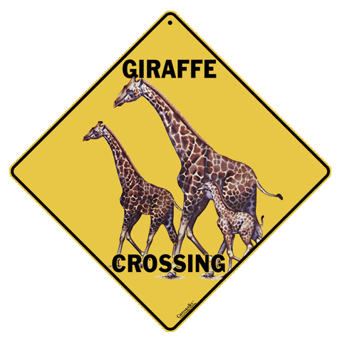 Giraffe Crossing - Front