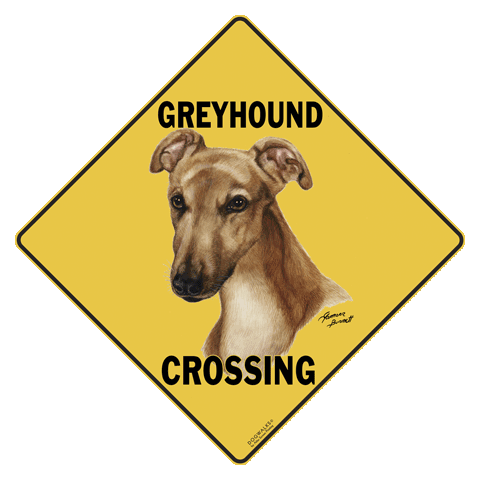 Greyhound Crossing