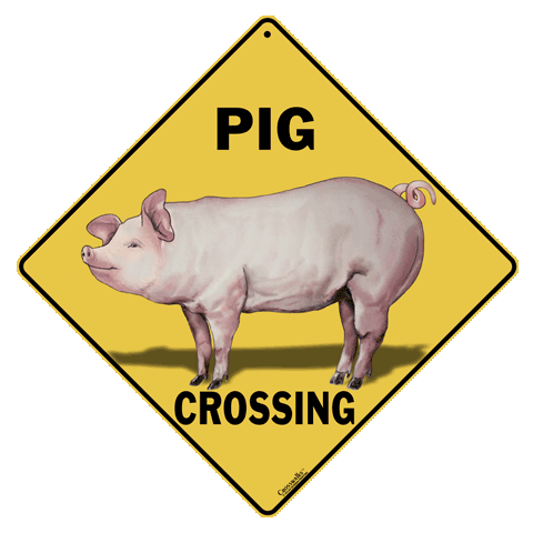 Pig Crossing Sign - Front