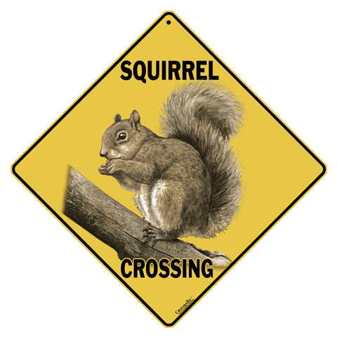 Squirrel Crossing Sign - Front