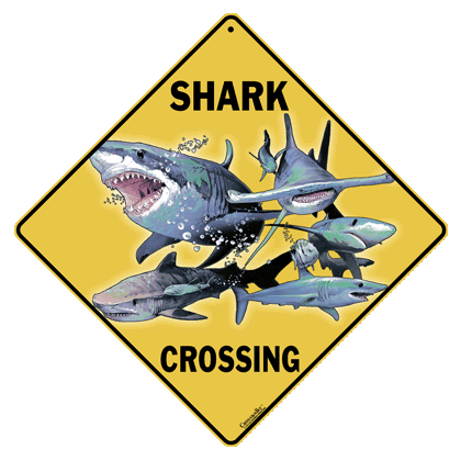 Shark Crossing Sign - Front