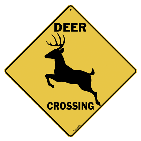 Deer Silhouette Crossing
