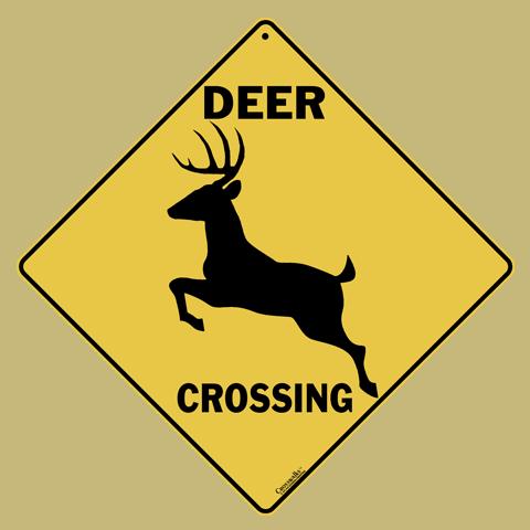 Deer Silhouette Crossing
