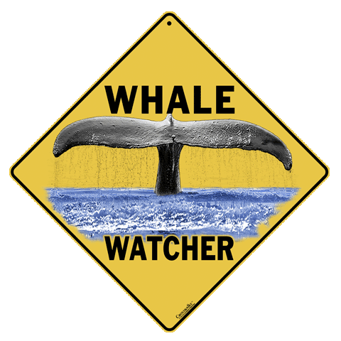 Whale Watcher Sign - Front