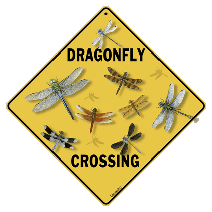 Dragonfly Crossing Sign