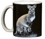 Kangaroo Ceramic Coffee Mug