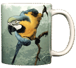 Blue & Gold Macaw Ceramic Mug - Back
