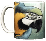 Blue & Gold Macaw Ceramic Mug - Front