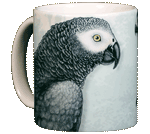 African Grey Ceramic Mug