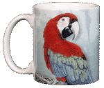 Green Wing Macaw Ceramic Mug - Front
