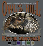 Screech Owl Oval Template - Charcoal