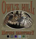 Screech Owl Custom Template