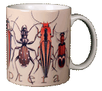 Coleoptera Ceramic Mug - Back