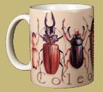Coleoptera Ceramic Mug - Front
