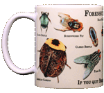 Forensic Entomology Ceramic Mug