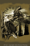 "Bald Eagle 2"" X 3"" Magnet"