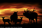 Twilight Elk 2