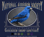 Indigo Bunting Custom Template - Navy