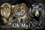 Lions & Tigers & Bears 2