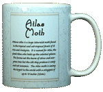 Atlas Moth Ceramic Mug - Back