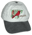 Cardinals Embroidered Cap - Stone/Black Unstructured Cap