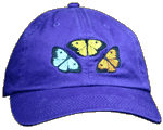 Butterfly Fun Adult Embroidered Cap