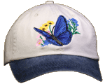 Blue Butterfly Embroidered Cap test8