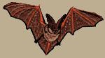 Bat Embroidered Cap test8