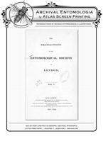 TESL VOL V PL 3 Swallowtail BF Reproduction Print
