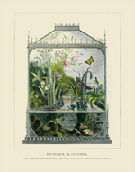 The Vivariam: Insect-Home Reproduction Print