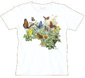 Butterfly Garden Ladies Scoop-Neck T - Front