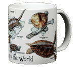 Turtles of the World Ceramic Mug - Back