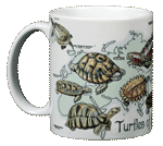 Turtles of the World Ceramic Mug - Front