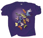Butterfly Splash Adult T-shirt
