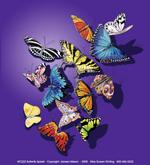 Butterfly Splash Adult T-shirt - Back