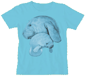 Manatee Hug Ladies Scoop Neck T