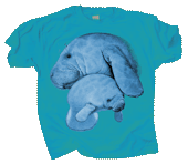 Manatee Hug Youth T-shirt